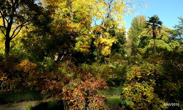 Un paseo por el jard n bot nico en oto o flickr photo for Caracteristicas de un jardin botanico
