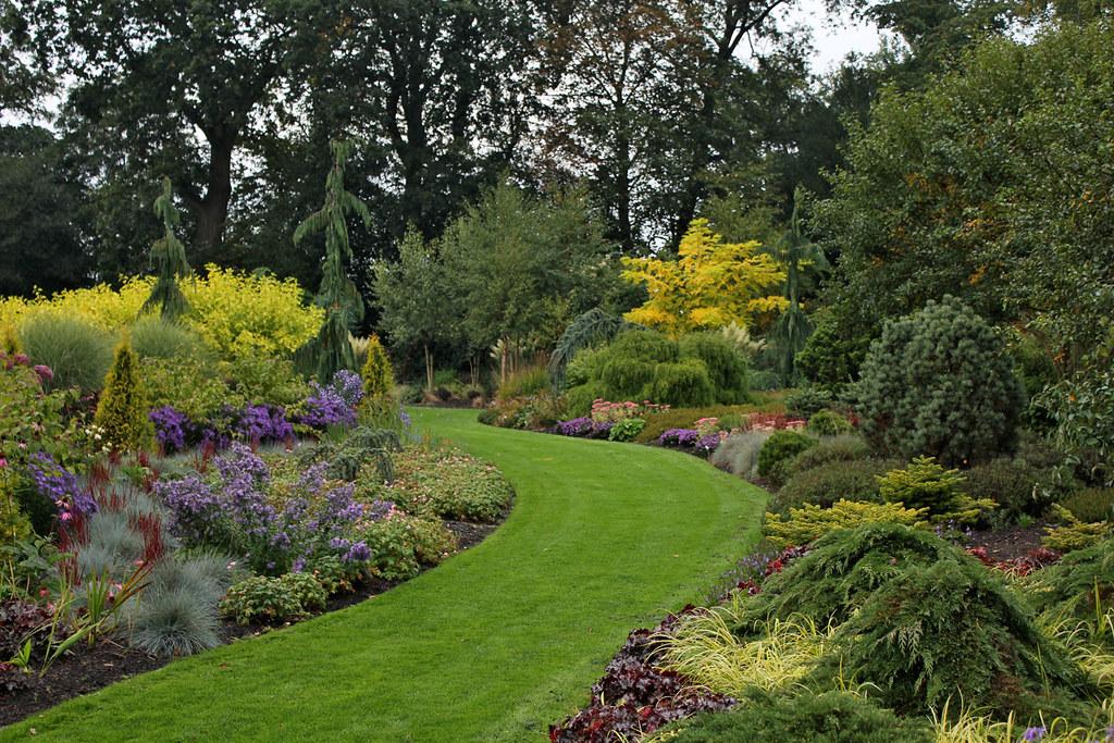 Foggy Bottom Gardens Plants With Golden Foliage