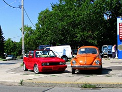 Volkswagen Beetle/ Cabriolet - Colourful VWs