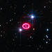 New Hubble Observations of Supernova 1987A Trace Shock Wave