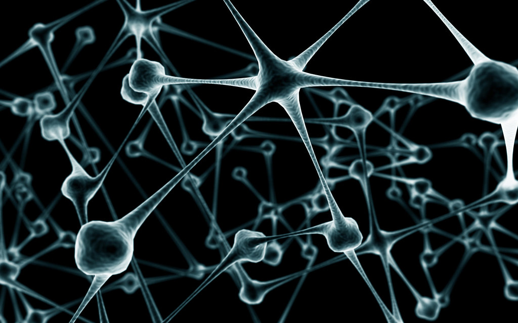 Molecule   Caroline Davis2010   Flickr