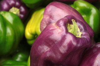 purple peppers | by jessica wilson {jek in the box}