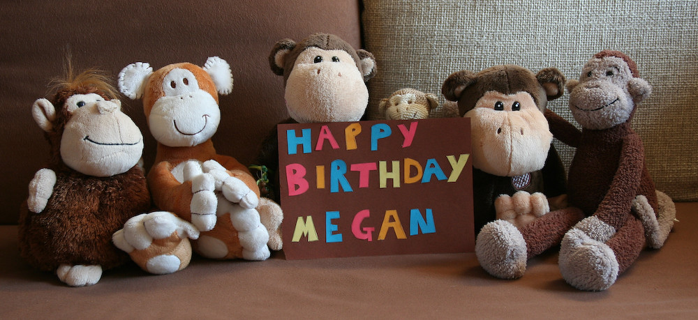258 365 Happy Birthday Megan Today Was Another Lovely