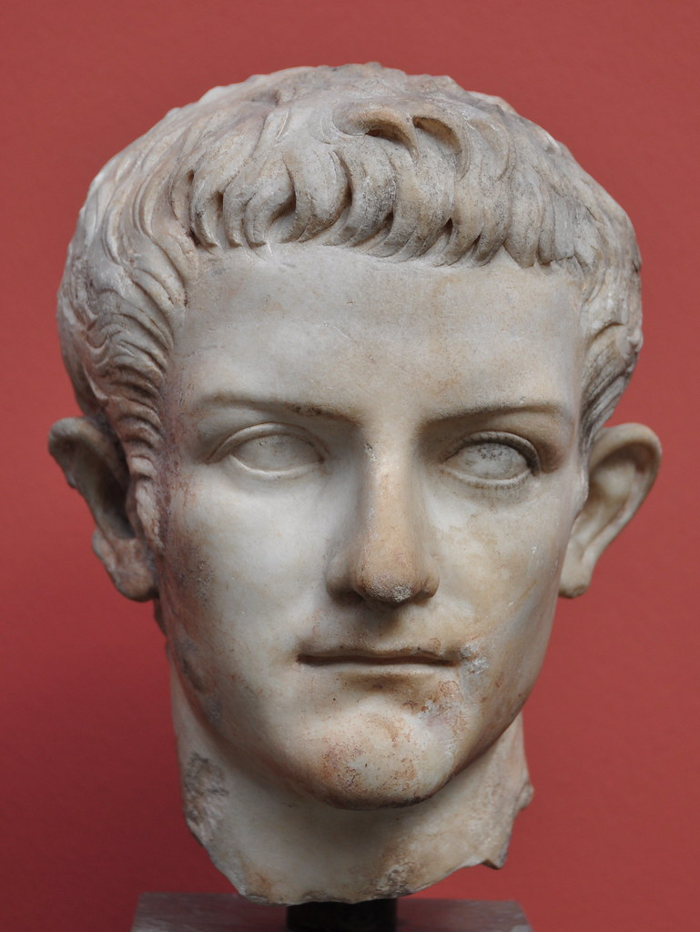 suetonius and the mad emperors He is one of the best known roman emperors of all time because of the cruelty and madness that is commonly  and the biographer suetonius,  was augustus mad.