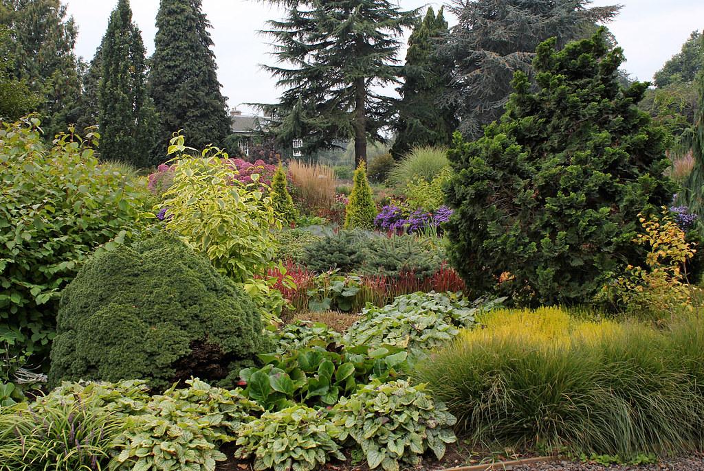 The Summer Garden Bressingham Gardens The Gardens