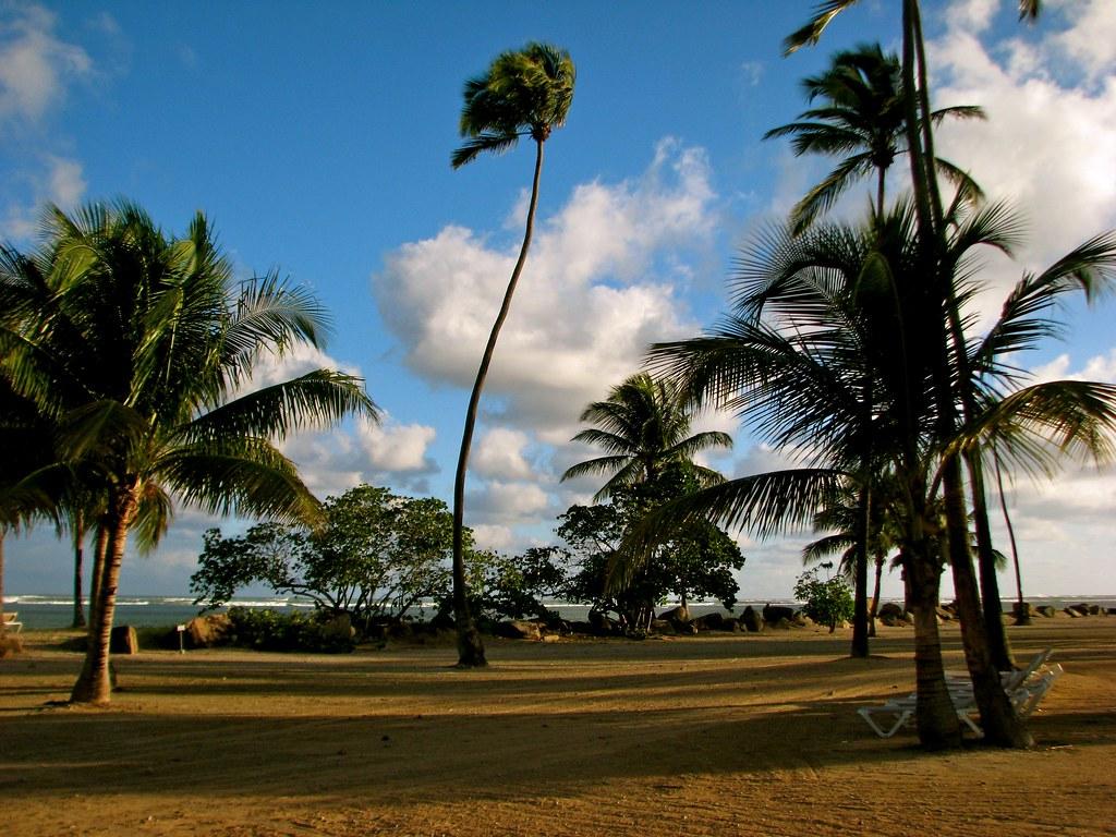Coco Beach Resort Mui Ne Booking
