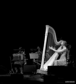 Joanna Newsom | by LiesBaas