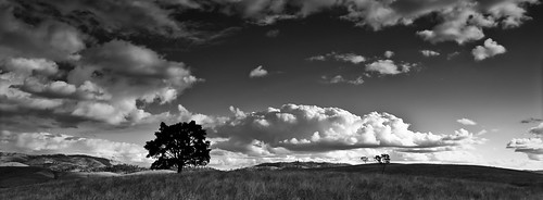 Some Hills...Some Clouds...And A Tree! | by PhilM Photography