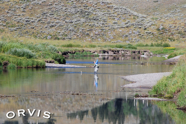 Orvis fly fishing contest landing yellowstone cuts on for Orvis fly fishing blog