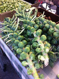 Crazy Brussel Sprout Stalks @ Ferry Plaza Farmer's Market | by cjmartin