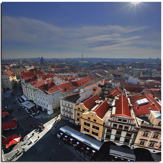 Seagull view in Prague | by Nespyxel