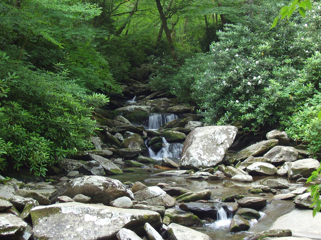 ... Smoky Mountain Countertops By Chimney Tops Trail Great Smoky Mountains  National Park T ...