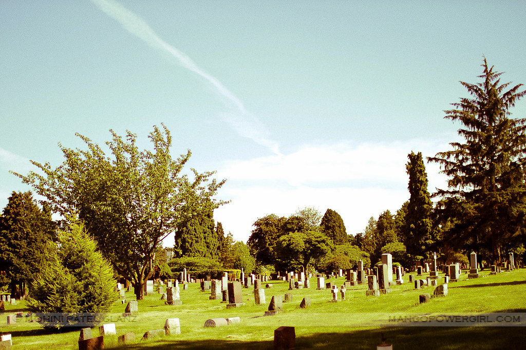 contrails in the cemetery