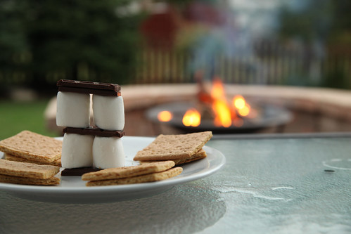205.265 More S'mores | by barilynn (Time Stops Photography)