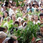 Semana Santa 2003