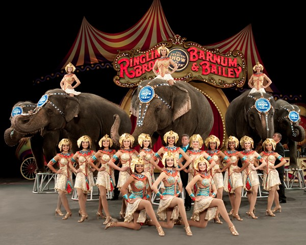 ELEPHANT MENAGE | by frankkrenz ELEPHANT MENAGE | by frankkrenz : circus elephant costume  - Germanpascual.Com
