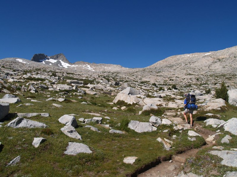 The trail climbs continuously towards Donohue pass