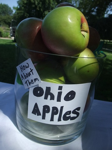 Ohio Apples | by swampkitty