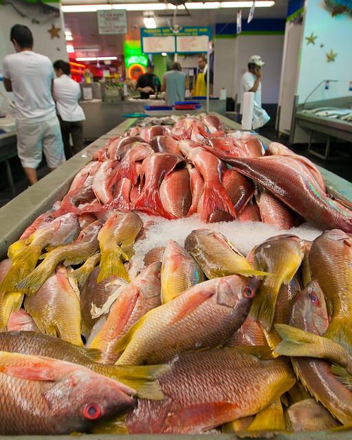 San pedro fish market flickr photo sharing for Fish market san pedro