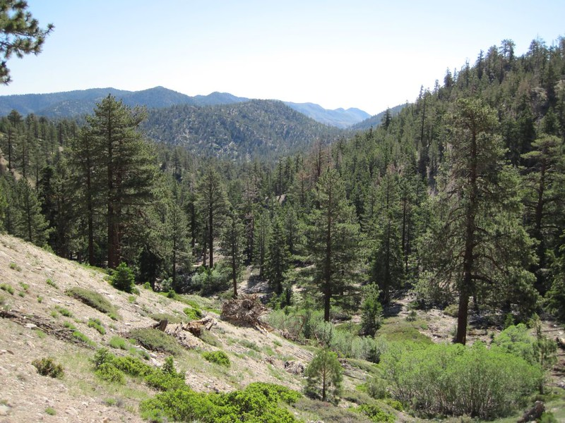 The Fish Creek Camp (and creek) are down below us as we switchback up the trail in the sun.