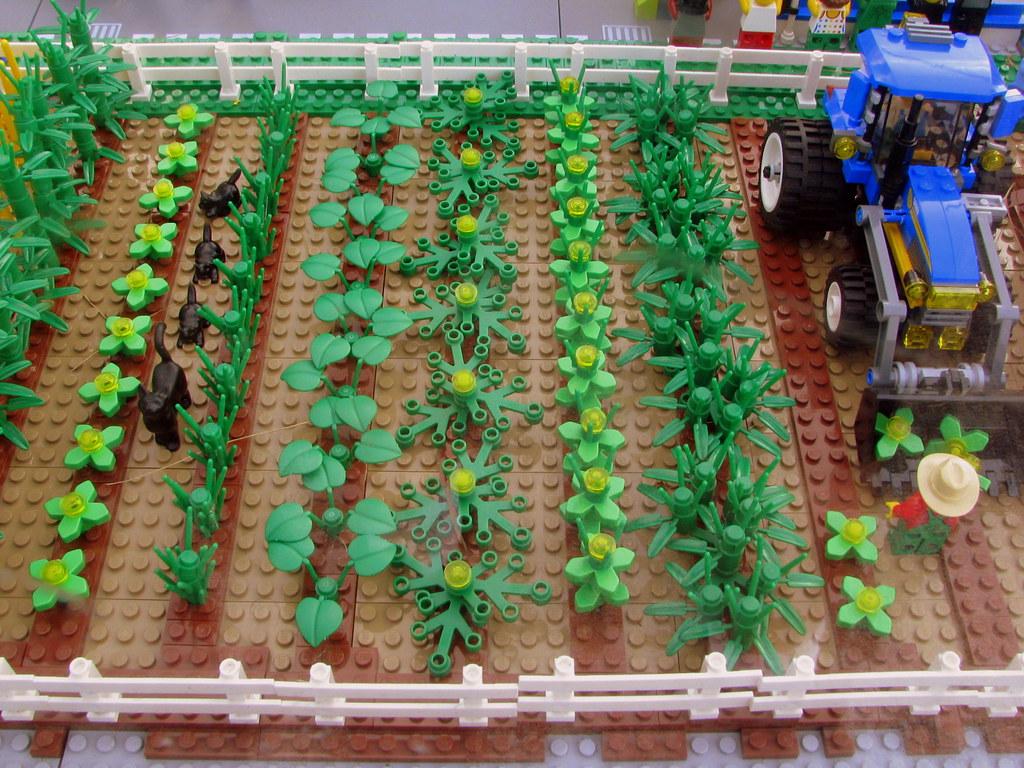 09 TN State Fair 126 Lego Farm Part of the Lego Experien…