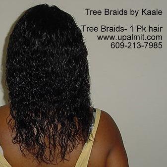 Tree Braids Wet And Wavy Treebraids Or Interlock Flickr