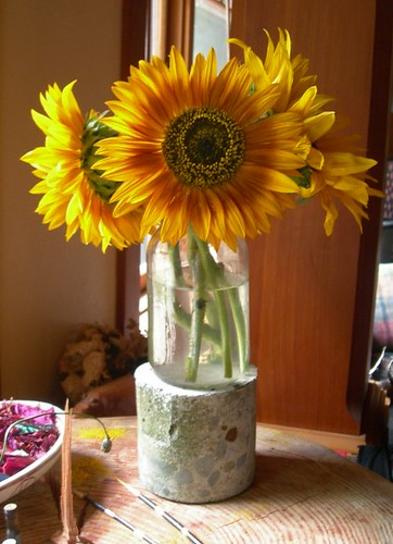 sunflower vignette | by mickmarineau+ barbjensen