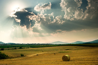 Summer sun [explored] | by Nick-K (Nikos Koutoulas)
