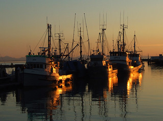 Steveston | by Uncle Buddha