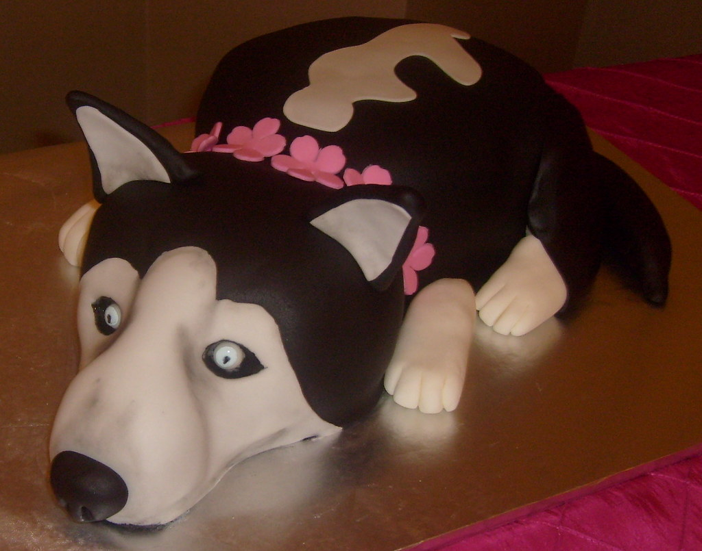 Husky Cake Jpg Dpasteles Shop Flickr