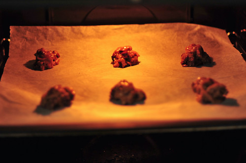 Chocolate Chip Cookies in the Oven | by goingslowly