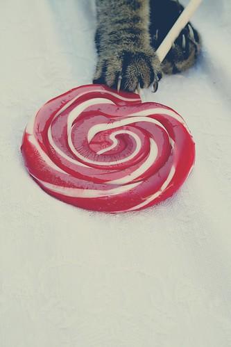 cat with a candy frl klein flickr. Black Bedroom Furniture Sets. Home Design Ideas