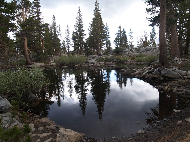 A small, stagnant pond we discovered as we made our way across the high plateau above Waugh Lake