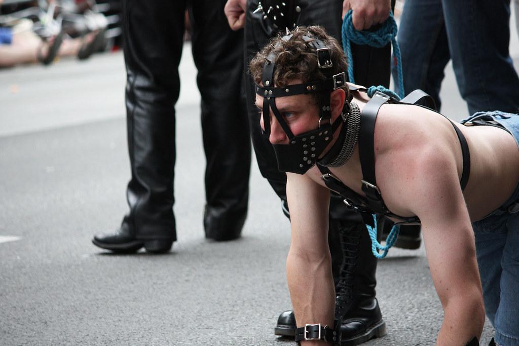 Forum de maître esclave gay