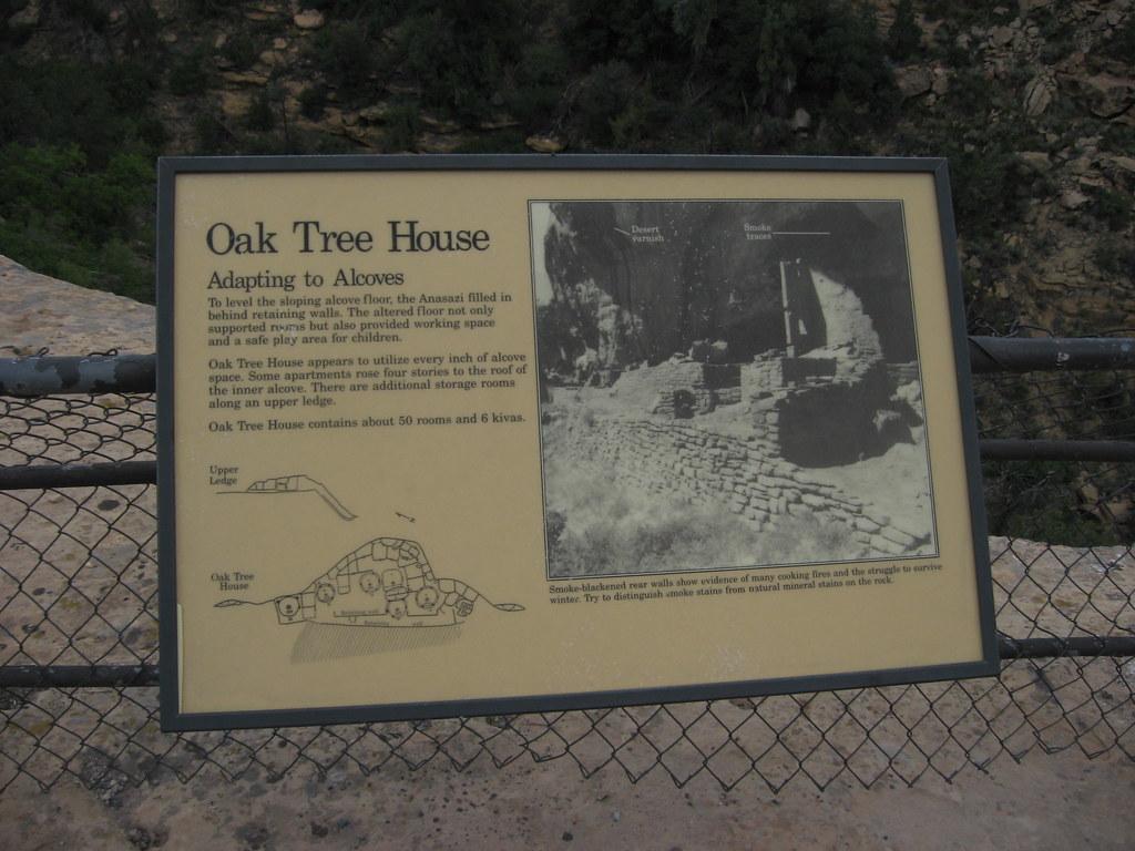 Oak Tree Apartments Kingsville