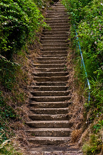 Bottom of Appley Steps | by garryknight