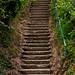 Bottom of Appley Steps