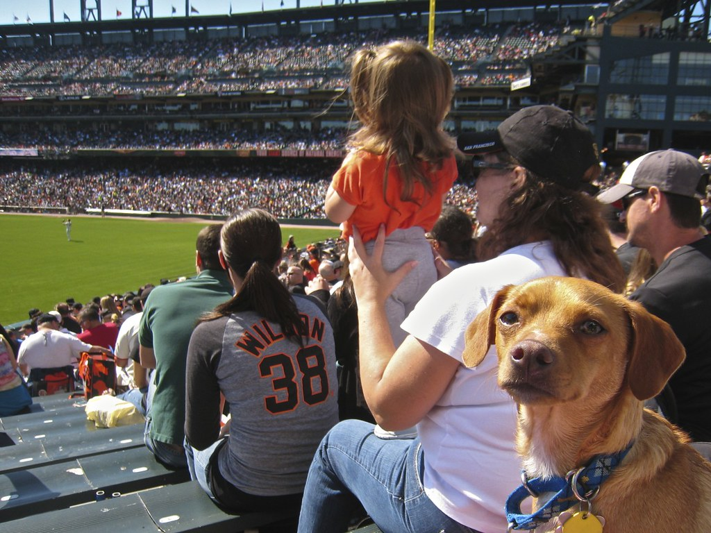 Sf Giants Dog Days Of Summer