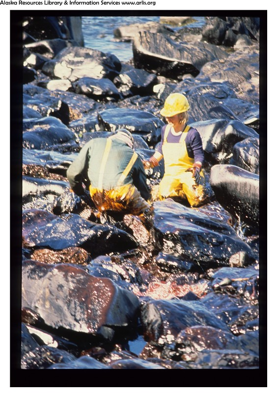 a discussion on cleaning up after the exxon valdez being a mistake