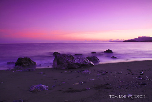 gLORIOUS dAWN | by tOM lOIS wINDSON
