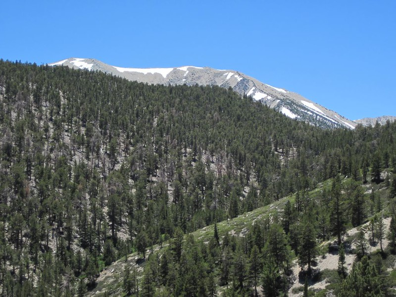 San Gorgonio Mountain shows itself above Lake Peak (10161'), with Fish Creek Saddle (9805') on the far right