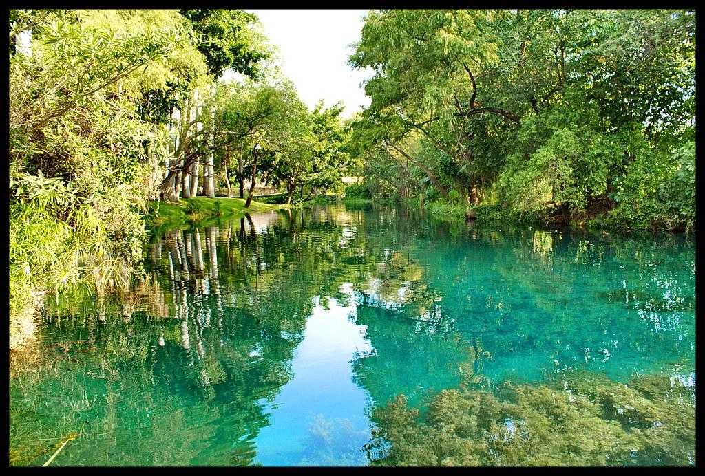 Las Estacas, Morelos, México   ZaurusMX   Flickr