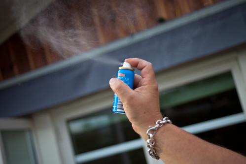 bugs spray