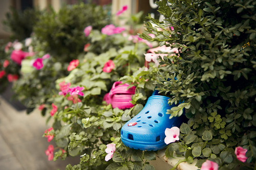 Little Blue Shoe | by Mistur Photography