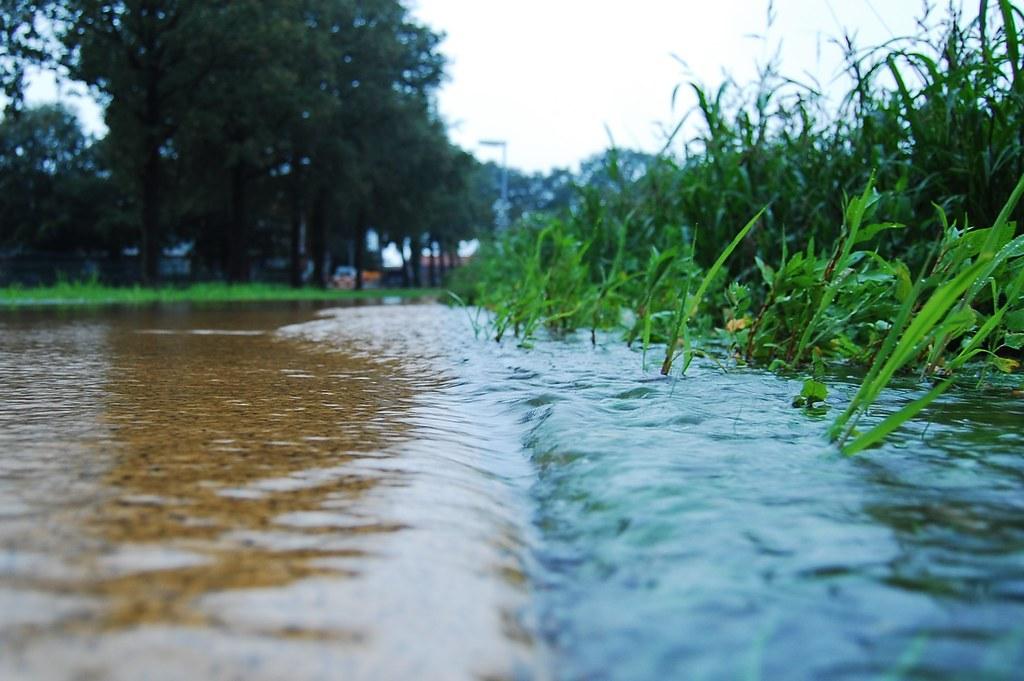 After The Rain Jan Willem Reusink Flickr