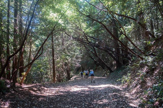 La Honda Creek Preserve