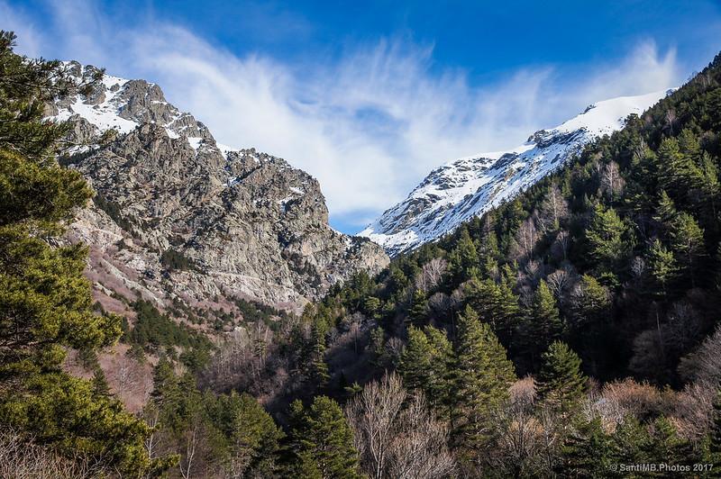 Vall de Ribes subiendo a Coma de Vaca