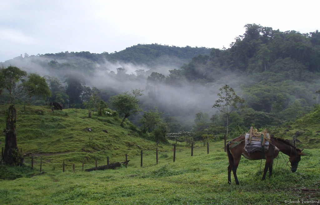 morning mist, La Liberacion, Honduras