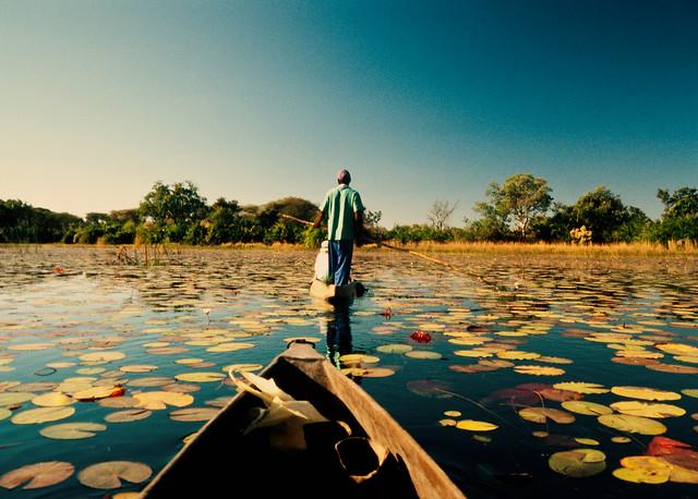 Okavango Delta // Okavango River