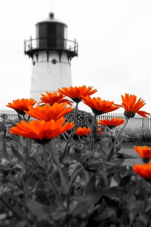 Point Montara Lighthouse, Half Moon Bay, California | by stephenandjes